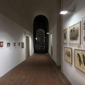 Codici Sorgenti Palazzo Platamone CT 01.2016_0226
