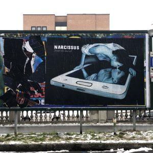 5_narcissus-_reggio-emilia-feb-2019